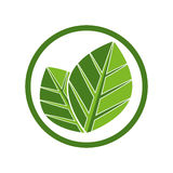 Two leaves icon. Royalty Free Stock Photography