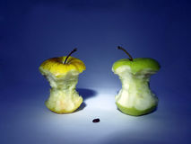 Two leftover bits of apple and one seed Royalty Free Stock Photography