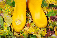 Two legs with boots standing on fall ground Stock Photography