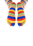 Two legs of the clown Stock Image