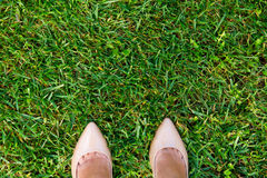 Two legs on grass Royalty Free Stock Image