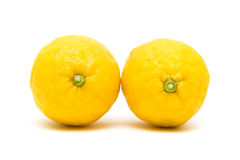 Two lemon closeup on white background Stock Photo