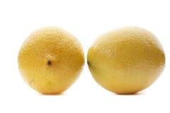 Two lemons. Isolated on white background Royalty Free Stock Photos