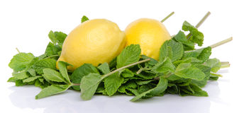 Two lemons on a bed of fresh mint Stock Photography