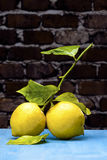 Two Lemons on a blue wood Stock Images