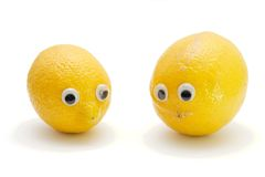 Two lemons with eyes isolated Royalty Free Stock Image