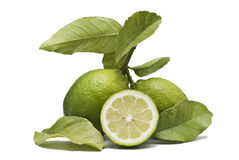 Two lemons and a half. royalty free stock images