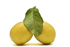 Two lemons and one leave. Royalty Free Stock Photography
