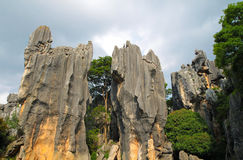 Two limestone at Kunming Stone forest or Shilin Stock Photography