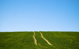 Two lines in nature. From tractor Stock Photo
