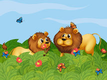 Two lions in the garden with butterflies Royalty Free Stock Image