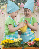 Two little adorable little girls play with yellow chicks. Girls twins of three years play with Chickens, in beautiful blue aprons Stock Image