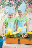 Two little adorable little girls play with yellow chicks. Girls twins of three years play with Chickens, in beautiful blue aprons Royalty Free Stock Photos