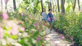 Two little asian children running through flower field in park