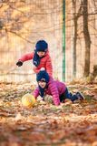 The two little baby girls playing in autumn leaves. The two little girls playing with ball in the autumn leaves in park Royalty Free Stock Photos