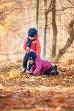 The two little baby girls playing in autumn leaves. The two little girls playing with ball in the autumn leaves in park Royalty Free Stock Photography