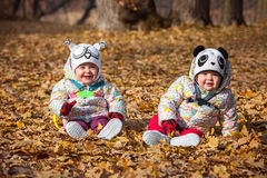 The two little baby girls sitting in autumn leaves. The two little baby girls sitting in the autumn leaves Stock Photo