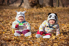 The two little baby girls sitting in autumn leaves. The two little baby girls sitting in the autumn leaves Royalty Free Stock Images