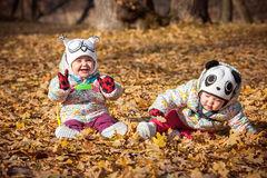 The two little baby girls sitting in autumn leaves. The two little baby girls sitting in the autumn leaves Royalty Free Stock Photos
