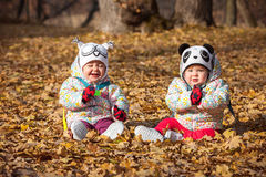 The two little baby girls sitting in autumn leaves. The two little baby girls sitting in the autumn leaves Stock Photography