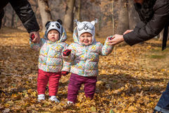 The two little baby girls standing in autumn leaves. The two little baby girls standing in the autumn leaves Royalty Free Stock Photo