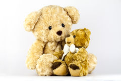 Two little bears Royalty Free Stock Photos