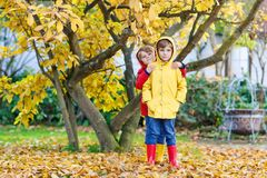 Two little best friends and kids boys autumn park in colorful cl. Othes. Happy siblings children having fun in red and yellow rain coats and rubber boots. Family Royalty Free Stock Photo
