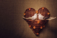 Two little bird the lovers, heart Stock Image