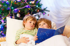 Two little blond sibling boys reading a book on Christmas. Two little blond sibling boys reading a book in bed near Christmas tree with lights and illumination Royalty Free Stock Photos