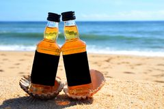 Two little bottles whiskey in the ocean shells stand on the sand. Alcoholic party in a nautical style on the shores of the stock image