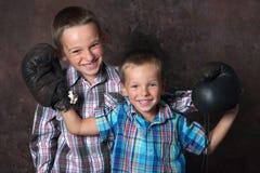 Two little boxer. Studio shot,two little boxer Royalty Free Stock Photos
