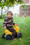 Two Little boys in an apple garden Stock Photography