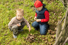 Two little boys building a campfire Royalty Free Stock Image