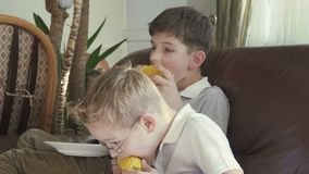 Two little boys are eating a corn stock video