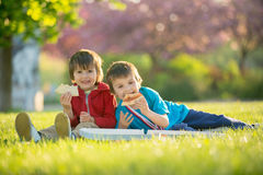 Two little boys having dinner with pizza on sunset, picnic on th Stock Image