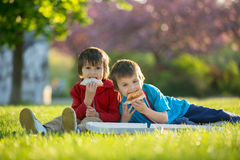 Two little boys having dinner with pizza on sunset, picnic on th Royalty Free Stock Photo