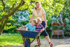 Two little boys having fun in a wheelbarrow pushing by mother Royalty Free Stock Photo