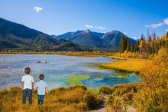 Two little boys holding hands on the lake Royalty Free Stock Images