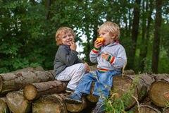 Two little boys laughing and eating apple in summer forest Stock Photos