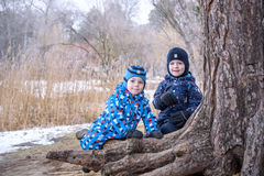 Two little boys playing, on autumn landscape, climbing and smiling  the tree root Royalty Free Stock Photos