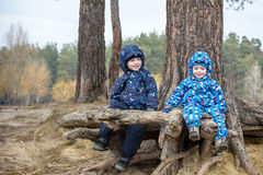 Two little boys playing, on autumn landscape, sitting and smiling the tree root Royalty Free Stock Image