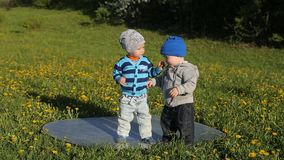 Two little boys playing in the Park stock footage