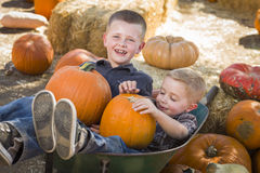 Two Little Boys Playing in Wheelbarrow at the Pumpkin Patch Royalty Free Stock Photography