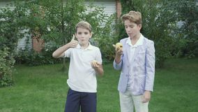 Two little boys eats pears in the garden stock video