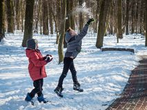 Two little boys throw snow up and have fun in winter park. Cute children play snowballs and throws a snow. Two adorable little brothers have a good time royalty free stock image