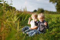 Two little brother boys playing near forest lake on summer eveni Royalty Free Stock Photo