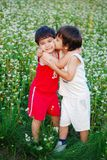 Two little brothers kissing each other Royalty Free Stock Photography