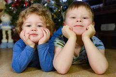 Two little brothers lie on the floor. Propping their heads on the background of a Christmas tree royalty free stock photos