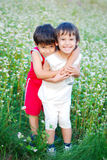 Two little brothers loving each other. Two little brothers standing outdoor in grass Stock Image