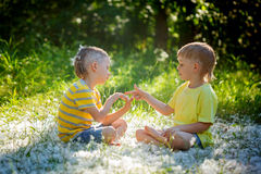Two little brothers play in rock-paper-scissors sitting on grass Stock Images